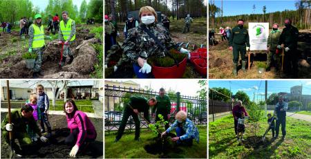 ФБУ «Рослесозащита» примет участие в международной акции «Сад памяти»